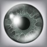 Mänskligt öga Iris Close Up Vector Sund medicinsk begreppsillustration stock illustrationer