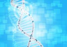 Mänskligt DNA Bakgrund av den vita cirkeln med sexhörning stock illustrationer