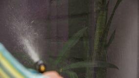 Mänskligt handtvagningfönster av huset stock video