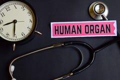 Mänskligt organ på papperet med sjukvårdbegreppsinspiration ringklocka svart stetoskop royaltyfri foto