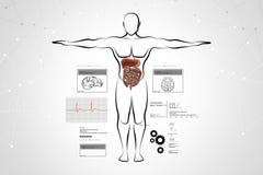 mänskligt system för huvuddeldigestivkex vektor illustrationer