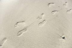 Mänskligt vuxet fotspår i den fina sanden på stranden Arkivfoton