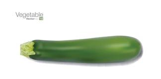Märg för ny grönsak Royaltyfri Foto