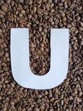 märka U i vit och bakgrund med grillade kaffebönor, bakgrund och textur royaltyfria foton