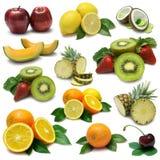 märkduk för 6 frukt Arkivfoton