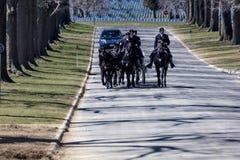 26. MÄRZ 2018 - ARLINGTON-KIRCHHOF, WÄSCHE D C - Beerdigung an Arlington-nationalem Friedhof, Virginia, Begräbnis, weiß lizenzfreies stockfoto