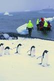 März der Pinguine Lizenzfreie Stockfotografie