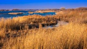8. März 2017 - großartige Insel, Nebraska - PLATTE-FLUSS, VEREINIGTE STAATEN - Landschaft von Platte River, Mittelwesten stockfotografie