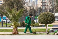 15. März 2017 Küste Park, Baku, Aserbaidschan Gärtnererzeugnis, das im Stadt Park im Garten arbeitet Stockfotos