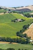 Märze (Italien) - Landschaft Stockbild