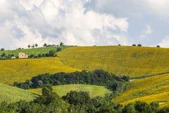 Märze (Italien), Landschaft Stockfotos
