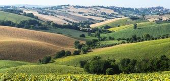Märze (Italien): Sommerlandschaft Stockfoto