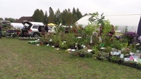Mässa för planta för träd för buske för trädgårdsmästareförsäljningsblomma dekorativ arkivfilmer