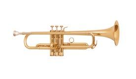 mässing isolerad trumpetwhite Royaltyfri Fotografi