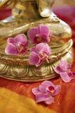 MässingsBuddha med blommor arkivfoton