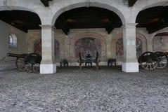 Mässingskanoner i gammal stad för Genève arkivbilder