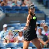 Mästare Ana Ivanovic för storslagen Slam från Serbien under rund match för US Open 2014 först Fotografering för Bildbyråer