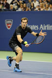 Mästare Andy Murray för storslagen Slam i handling under match för runda tre för US Open 2015 på Billie Jean King National Tennis Arkivfoto