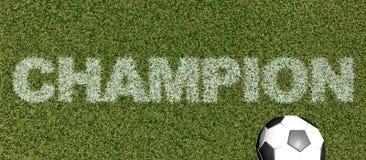 Mästare - gräsbokstäver på tolkning för fotboll field3D Royaltyfri Bild