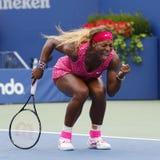 Mästare Serena Williams för storslagen Slam under den fjärde runda matchen på US Open 2014 Arkivfoto