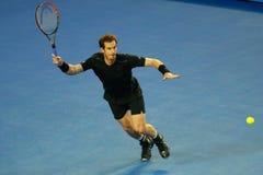 Mästaren Andy Murray för den storslagna slamen av Förenade kungariket i handling under hans australiskt öppnar finalmatchen 2016 Arkivfoton