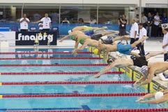 Mästerskap 2012 för Dubai Fina simningvärldscup Arkivbild