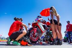 Mästerskap för Superbike för värld för 017 MOTUL-FIM Fotografering för Bildbyråer
