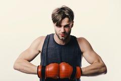 Mästerskap- och utbildningsbegrepp Boxaren gör slag och stansmaskiner som utbildning royaltyfria foton