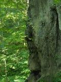 Mästerverk av naturen Head munk för sten Arkivfoton