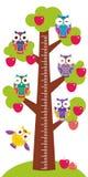 Mäter det stora Apple-trädet för fastställda ljusa färgrika ugglor med gräsplansidor och röda äpplen på vit bakgrundsbarnhöjd väg Royaltyfria Foton