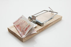 Mäusefalle 50-Pfund-Anmerkung Stockfotografie