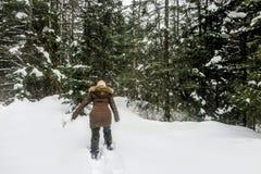 Młoda kobieta snowshoeing przez lasów Fernie prowincjonału Halny park, kolumbia brytyjska, Kanada zdjęcia royalty free
