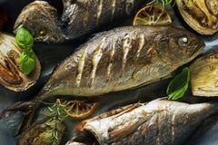 Mål för fiskmat Arkivbild