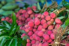 Mål för frukt för smak för litchiplommonfrukt rött sött ätit gemensamt Arkivfoton