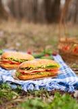 Mål för picknick för livsstil för Ciabatta brödsmörgås med bacon royaltyfri foto