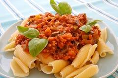 Turkiet bolognese sås med pasta Royaltyfri Fotografi