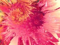 måla färgstänksplattertextur Arkivfoto