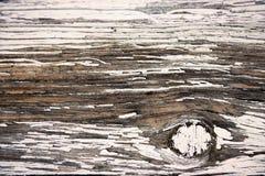 måla skalning wood Arkivbilder