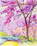 Måla som är färgrikt av den lösa himalayan körsbäret på berget Arkivbilder