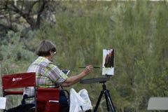 Måla vidskepelsebergen i den Apache föreningspunkten, Arizona Arkivfoto