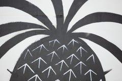 Målad ananas Fotografering för Bildbyråer