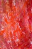 målad bakgrund Arkivfoto
