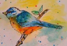 Målad blå fågel Arkivfoton