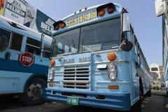 Målad buss i den Belize staden royaltyfria foton