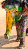 Målad elefant, Jaipur, Rajasthan, Indien Royaltyfri Fotografi