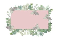 Målad fyrkantig ram för vattenfärg hand med silverdollareukalyptussidor och filialer med rosa bakgrund stock illustrationer