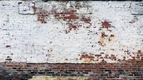 Målad gammal vit skala tegelstenväggen Arkivbilder