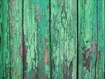 Målad grön wood yttersida, med en abstrakt uttrycksfull vertikal linje textur Pastellfärgad bakgrund för design Kopieringsdegutry Arkivfoton