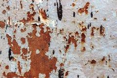 Målad järnyttersida med en stor rostig fläck- och metallkorrosion royaltyfri bild