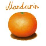 Målad mandarin Arkivfoto